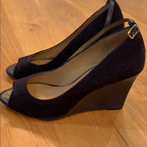 Ann Taylor Navy Suede Wedge Shoes with ankle Strap